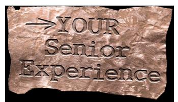 senior-experience